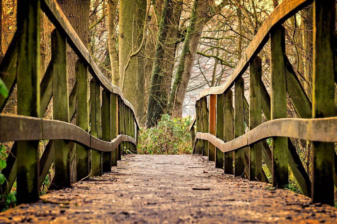 puente a NaturClimb