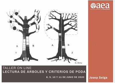 seminario web lectura de arboles y criterios de poda