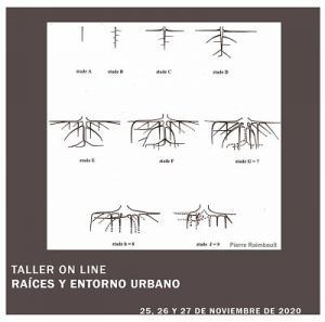 taller on line raices