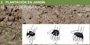 analisis macroscopico suelo
