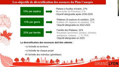 plan canopee