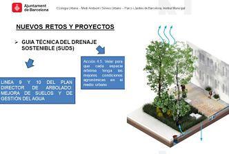 drenaje sostenible