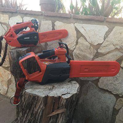 motosierras electricas de poda