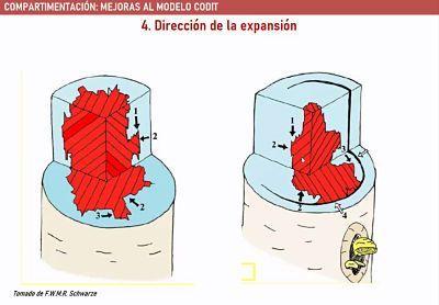 direccion de expansion